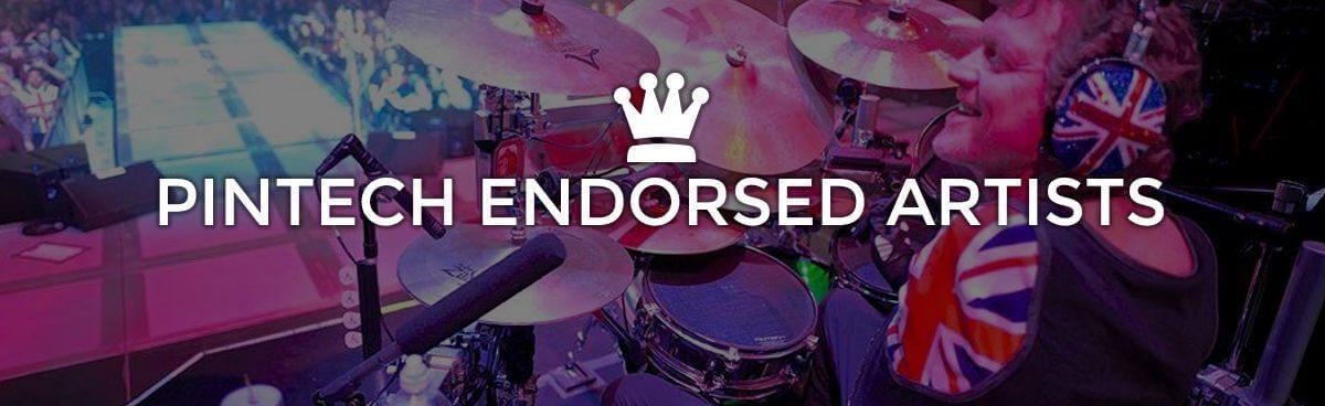 Pintech Endorsed Artists