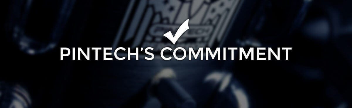 Pintechs Commitment